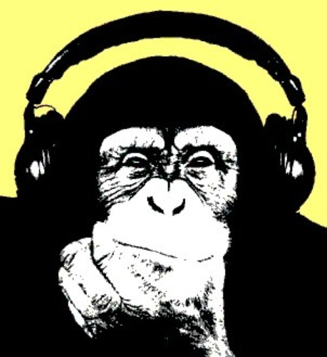 chimp headphones
