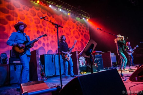 BLACKCROWES-2